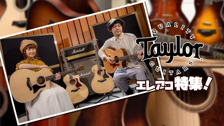 ■ Taylor ギターの特徴を解説してみた