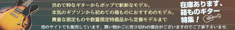 箱ものエレキ特集コーナー★