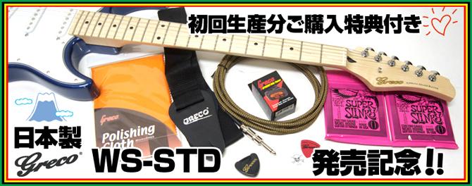 グレコアクセサリーキット プレゼント【エレキギター】