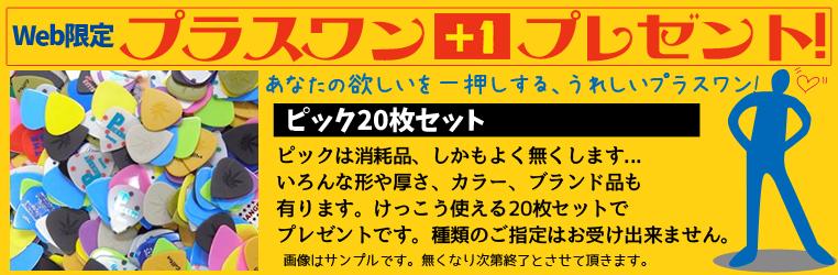 Web限定 ピック、ホルダー プレゼントキャンペーン