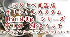 ワタナベ楽器店オリジナルカスタム「Build-Up」シリーズ 第1弾 SPスイッチ