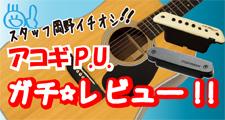 厳選!アコギP.U.ガチ☆レビュー!!