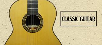 クラシックギター / エレガット