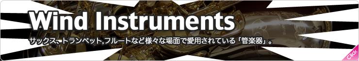 管楽器ソフトウェア