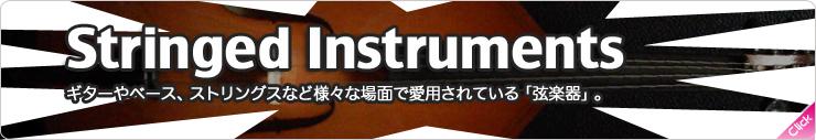 弦楽器ソフトウェア