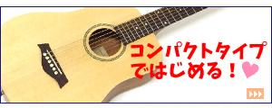 セピアクルー EAW-200【エレアコ】