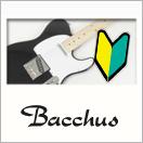 ビギナーにおすすめ!Bacchus