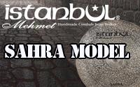 SAHRA MODEL