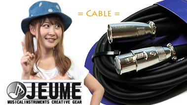 接続ケーブル