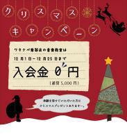 クリスマスキャンペーン | 京都音楽教室