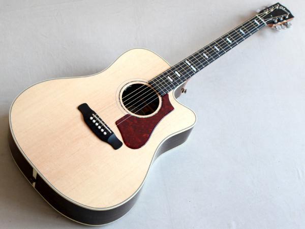Gibson ( ギブソン ) Hummingbird Rosewood AG 2018