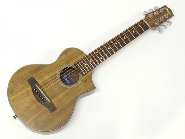 Ibanez ( アイバニーズ ) EWP14WB【  ミニ・ アコースティックギター 特価品  】