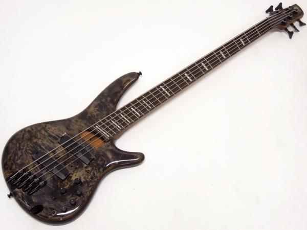 Ibanez ( アイバニーズ ) SRMS805-DTW 【マルチスケール 5弦ベース WO】