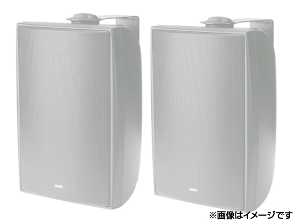 TANNOY ( タンノイ ) DVS6 W/ホワイト (ペア)  ◆ フルレンジスピーカー・全天候型