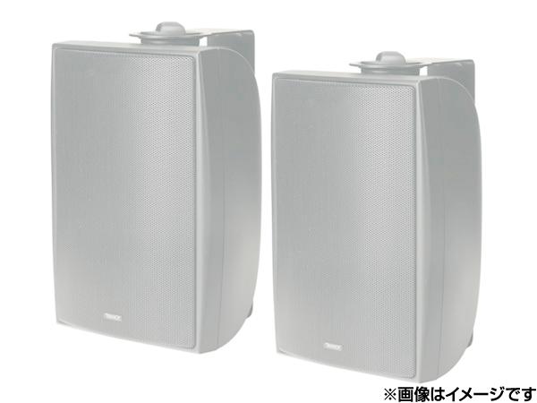 TANNOY ( タンノイ ) DVS4 W/ホワイト (ペア)  ◆ フルレンジスピーカー・全天候型