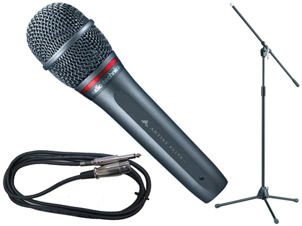 audio-technica ( オーディオテクニカ ) AE6100 TAMAブラックマイクスタンドSET (フォーン-XLR)