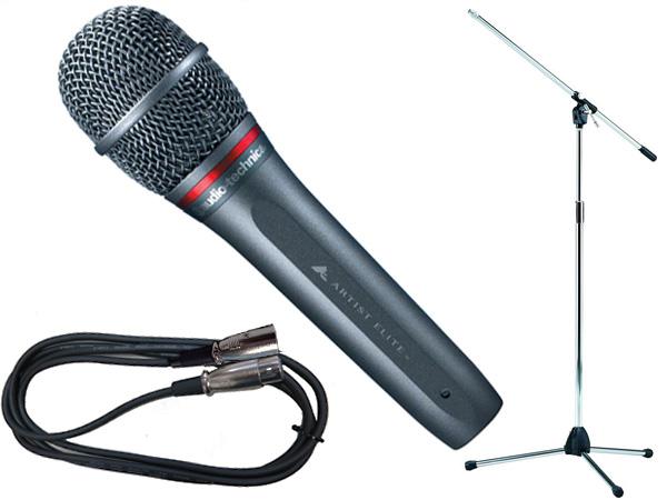 audio-technica ( オーディオテクニカ ) AE6100 TAMAシルバーマイクスタンドSET (XLR-XLR)