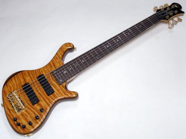 Freedom Custom Guitar Research Dulake Flat 6st / BAS