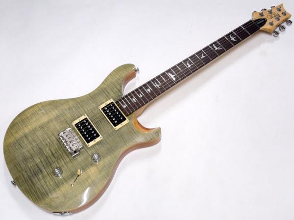 Paul Reed Smith /PRS ( ポール・リード・スミス ) SE Custom 24 N / Trampas Green