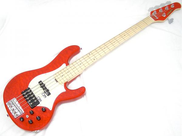 EDWARDS ( エドワーズ ) E-T-170BD(See Thru Festa Red)