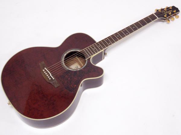 TAKAMINE ( タカミネ ) DMP551C WR 【国産 エレアコ アコースティックギター 】