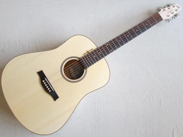 Seagull Natural Elements Dreadnaught SG