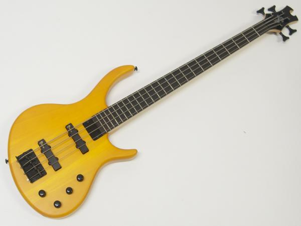 EPIPHONE ( エピフォン ) Toby Deluxe IV(TA)【by ギブソン トバイアス ベース 】