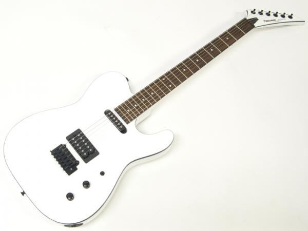 FERNANDES ( フェルナンデス ) TEJ-STANDARD SH(SW) 【エレキギター】