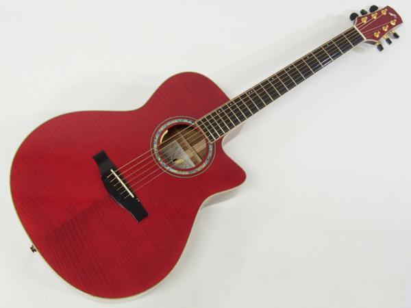 Morris ( モーリス ) SC-CUSTOM(RED)