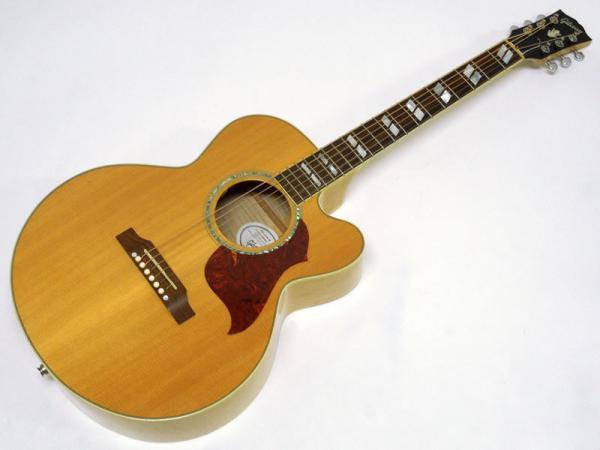 Gibson ( ギブソン ) J-165 EC Maple < Used / 中古品 >