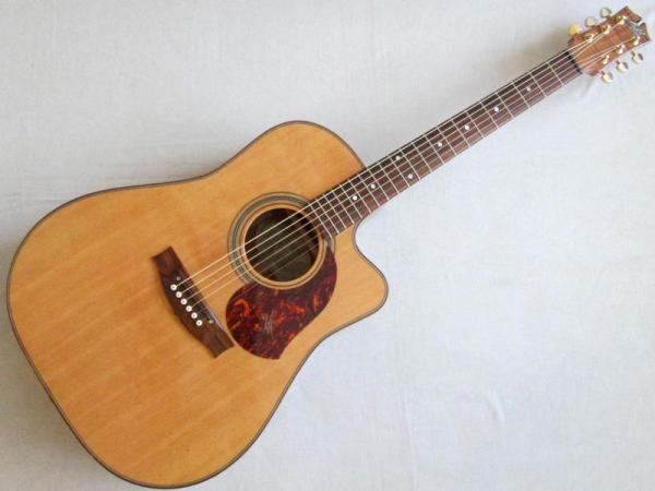 Maton Guitars ( メイトンギターズ ) EA80C AP-MIC