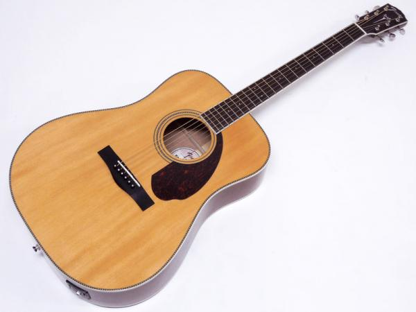 Fender Acoustic ( フェンダー アコースティック ) PM-1 Standard Dreadnought