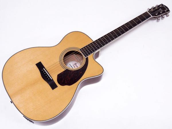 Fender Acoustic ( フェンダー アコースティック ) PM-3 Standard Triple-0