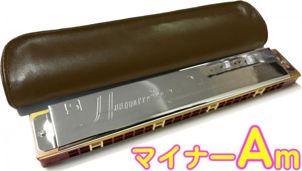 SUZUKI ( スズキ ) 高級スズキ・ハミング Humming-24 【 マイナー Am調 】 24穴 複音ハーモニカ 樹脂ボディ 楽器 ハミング 24 短調 Am minor Tremolo harmonica