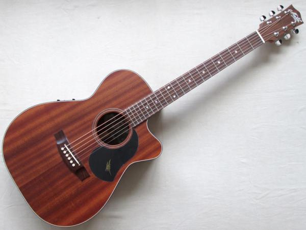 Maton Guitars ( メイトンギターズ ) M808C