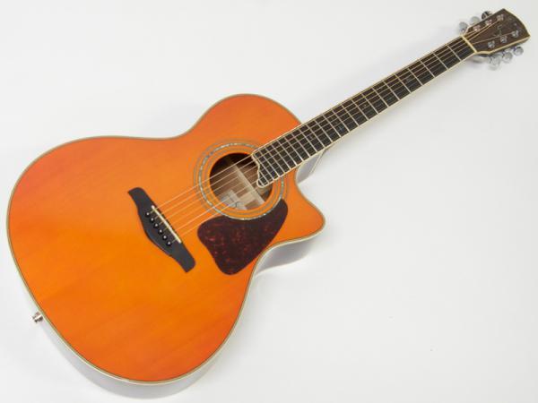 S.Yairi ( エスヤイリ ) YE-5M AM【エレアコ アコースティックギター   】