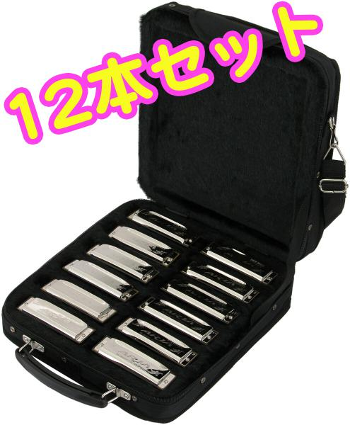 ARIA ブルースハーモニカ 12本 セット アウトレット 10穴 ブルースハープ 型 テンホールズ ハーモニカ C調 G A B D E F フラット ♭ シャープ ♯ ケース