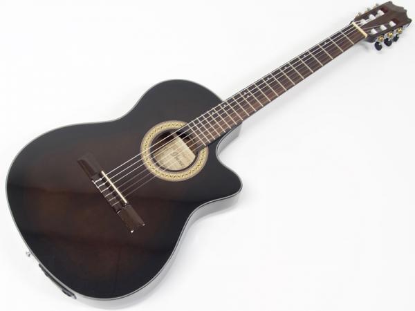 Ibanez ( アイバニーズ ) GA30TCE DVS【 エレガット クラシック ギター  】