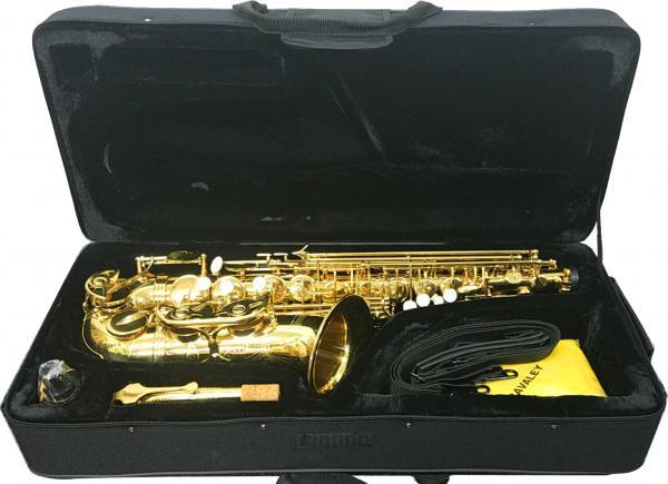 SAVALEY ( サバレイ ) アルトサックス 新品 アウトレット SAL-300 彫刻あり ゴールド サックス 初心者 管楽器 E♭ 本体 アルトサクソフォン マウスピース ケース セット