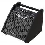 Roland ( ローランド ) PM-100