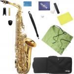 Kaerntner ( ケルントナー ) KAL62 アルトサックス 新品 管楽器 管体 ゴールド 本体 E♭ alto saxophone KAL62 セット D 北海道 沖縄 離島 同梱不可