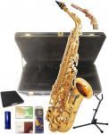 送料無料 イオ アルトサクソフォン AS1065 GL セライバ フリーシステムモデル AS1065SF-GL 初心者 管楽器 楽器 管体 ゴールド 【 IO AS-1065GL】