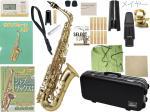 Antigua  ( アンティグア ) アルトサックス スタンダードシリーズ 管体 ゴールド A.SAX GL 初心者 管楽器 サックス 本体 【 アンティグア GL アルトサクソフォン set B】