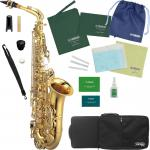 Kaerntner ( ケルントナー ) KAL62 アルトサックス 新品 管楽器 管体 ゴールド 本体 E♭ alto saxophone KAL62 セット B 北海道 沖縄 離島 同梱不可