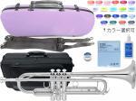 YAMAHA ( ヤマハ ) YTR-4335GS2 銀メッキ トランペット 新品 ゴールドブラスベル B♭ 管楽器 本体 【 YTR-4335GSII セット A】