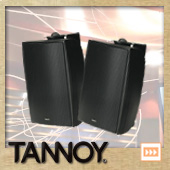 TANNOY DVS4 B/ブラック (ペア)  ◆ フルレンジスピーカー・全天候型