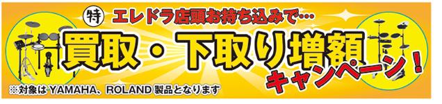 エレドラ買取・下取り増額キャンペーン!