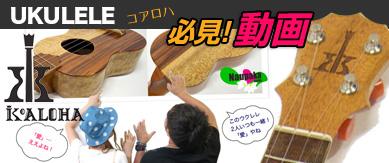コアロハ ウクレレ動画!