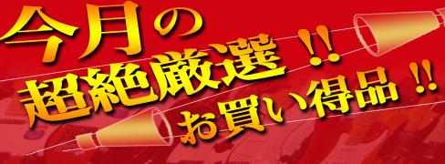 今月の超絶厳選!!お買い得品!!