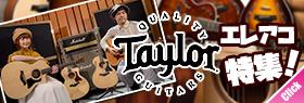 Taylor Guitar 特集